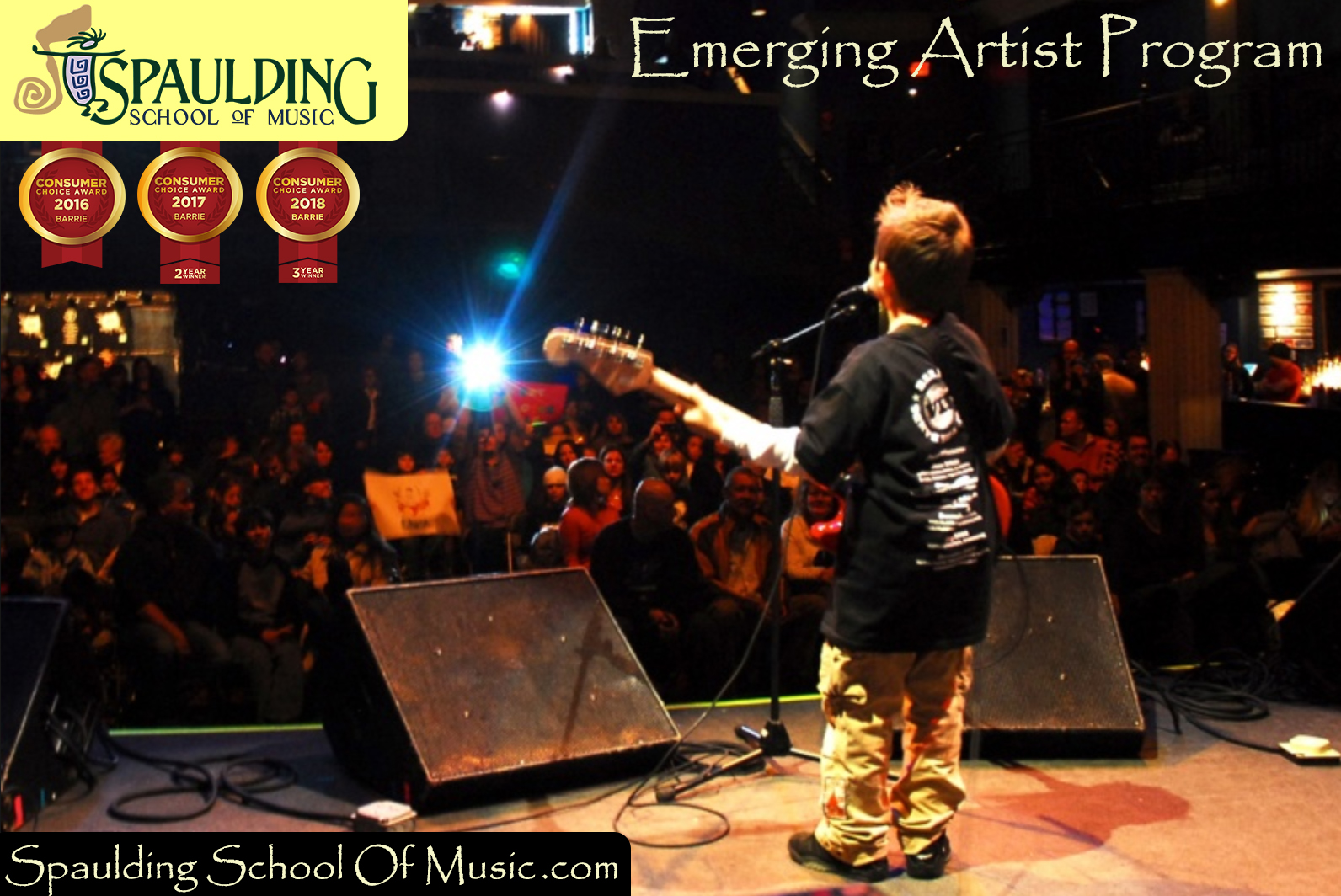 Emerging Artist Program Barrie
